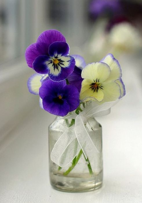 Pansy Floral Arrangement In A Small Clear Bottle Vase Flower Arrangements Pansies Pretty Flowers