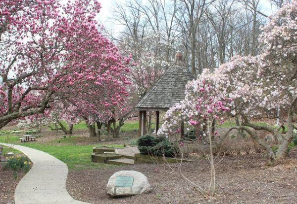 Spring Blossoms At Eden Park 365 Cincinnati Eden Park Cincinnati Parks Midwest Road Trip