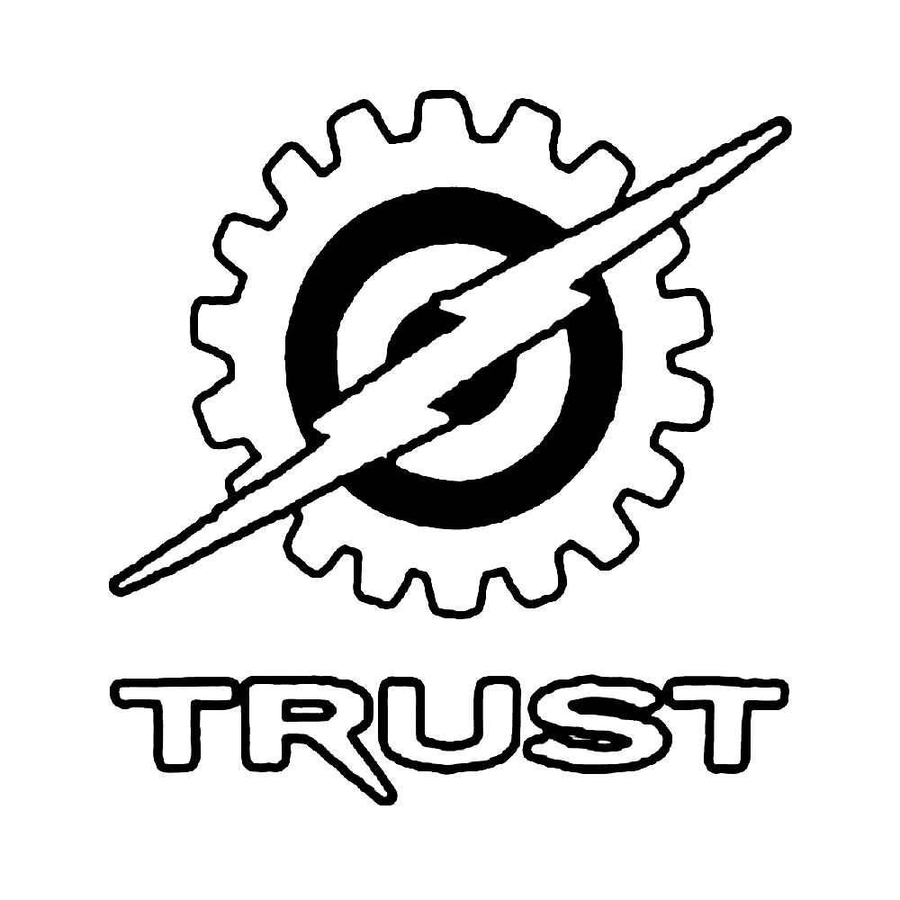 Trust Skateboards Skateboard Decal Https Ballzbeatz Com Product Trust Skateboards Skateboard Decal How To Apply Letters Life