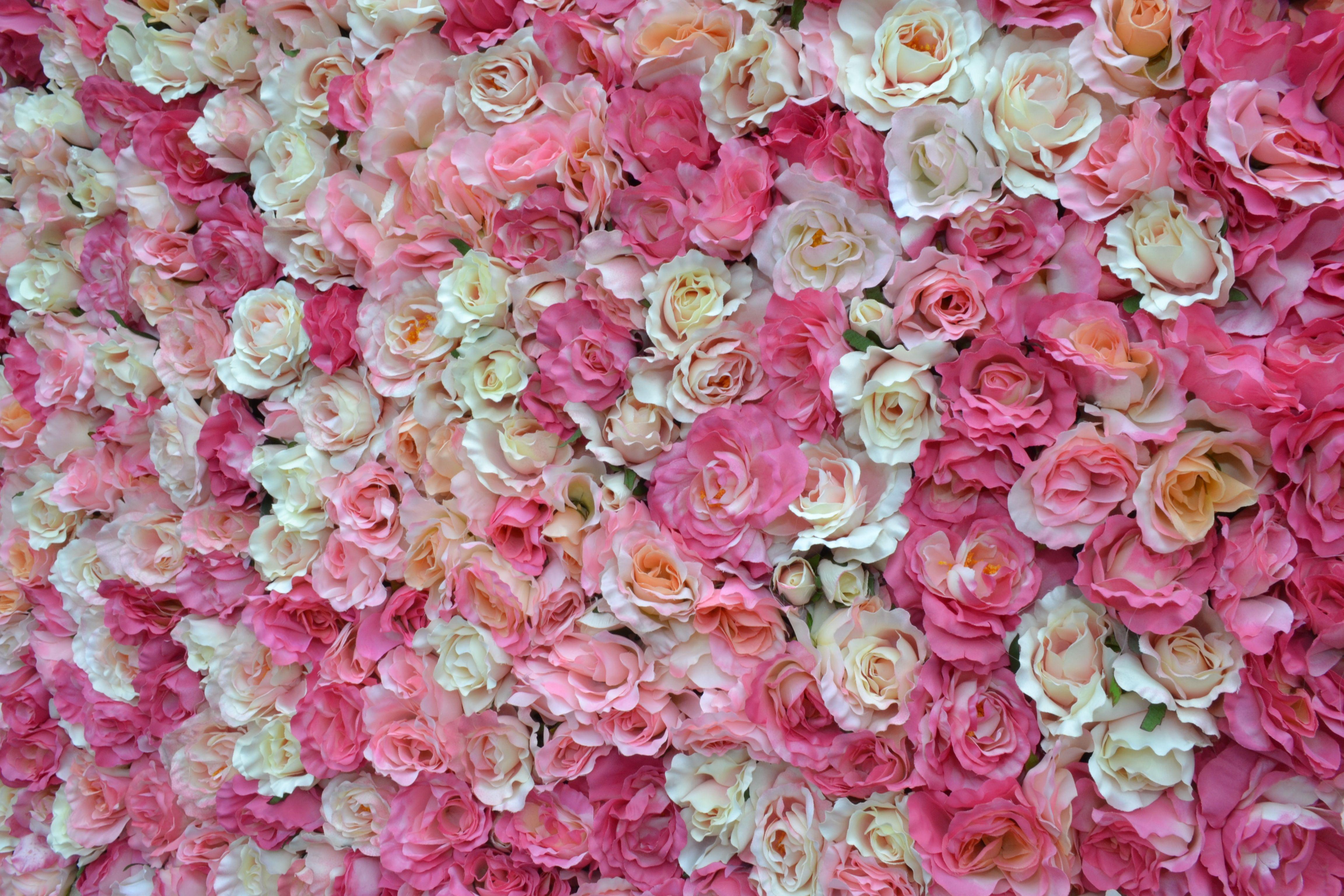 flower wall Pesquisa Google Backgrounds Pinterest