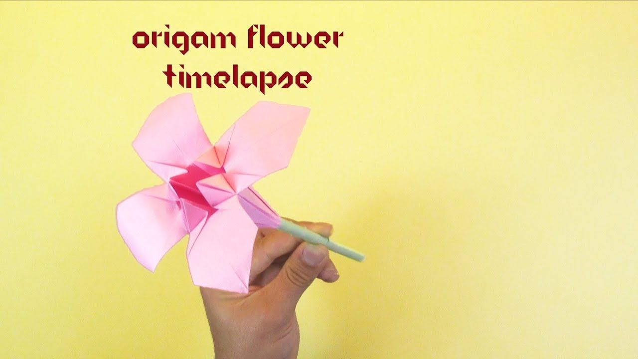 Video Tutorial Of Create Origami Flower We Are Here With Tutorial