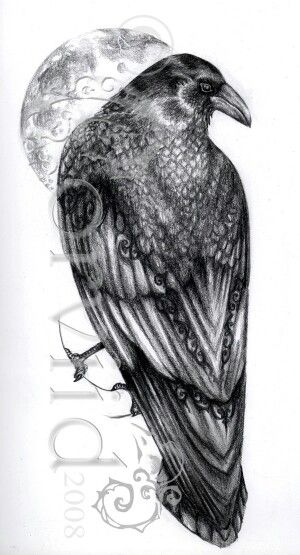 Raven Moon Tattoo Tattoos In 2019 Raven Tattoo Celtic Raven