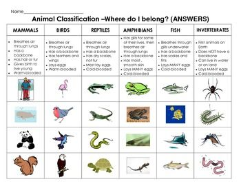 Animal Classification Cut & Paste: Sort animals by characteristics ...