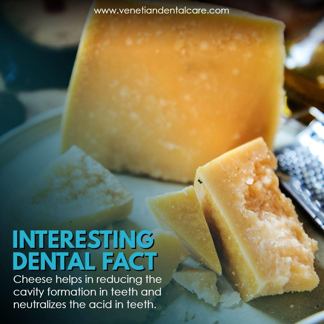 ca39755d52b66b68a5462f620e80e3cb - Dental Care At Venice Gardens Venice Fl