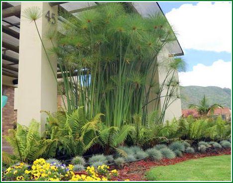 Fotos de jardines peque os para casas elegantes y for Decoracion de jardines pequenos con flores
