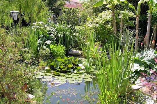 Jardin > Déco Jardin > Les plus beaux bassins | bassins | Pinterest