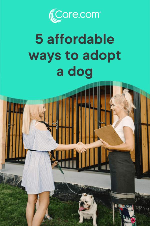 5 Ways To Adopt A Dog On The Cheap Dog Care Dogs Pets