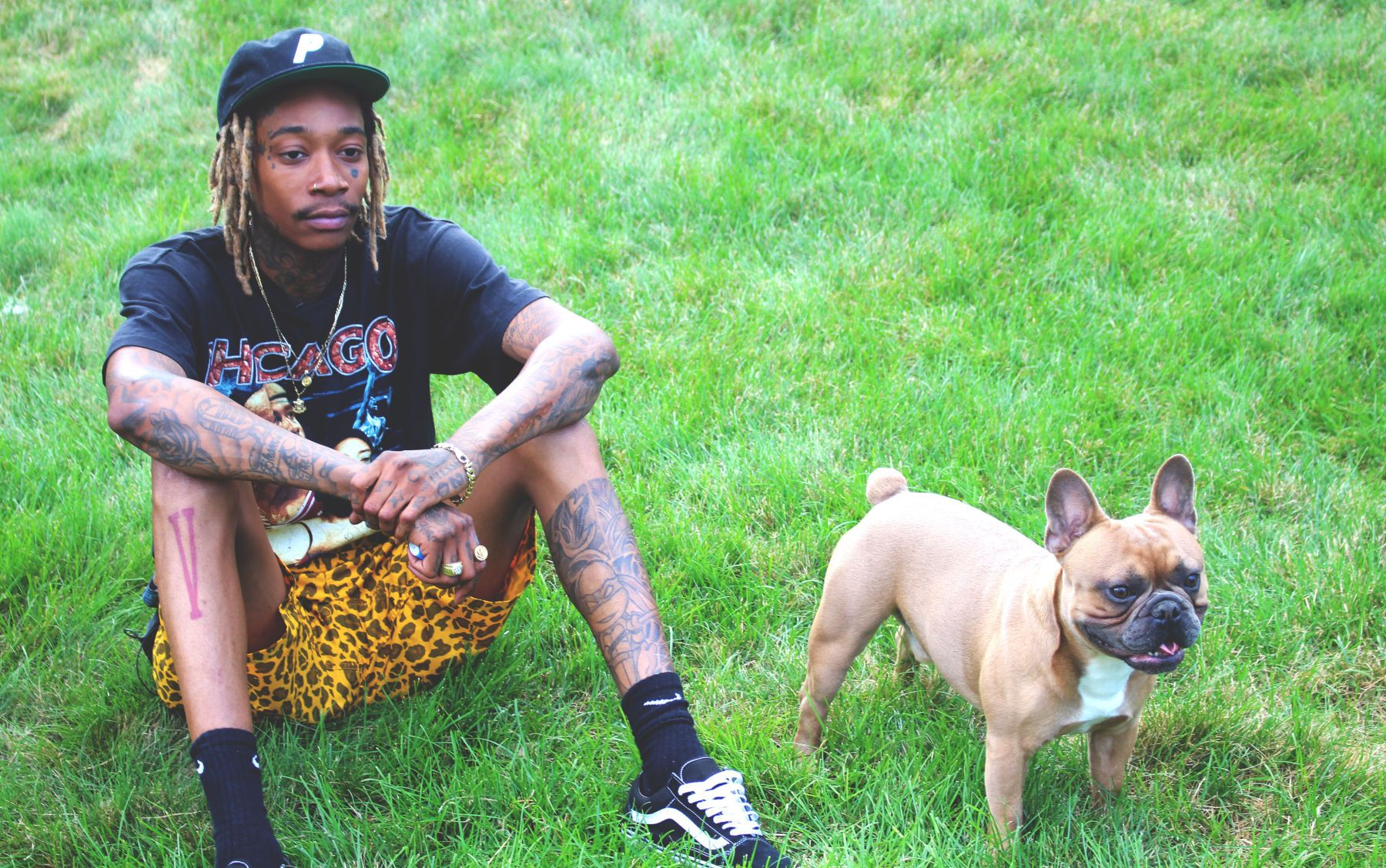 You Re About To Fall In Love With Wiz Khalifa S Dog Vincent The