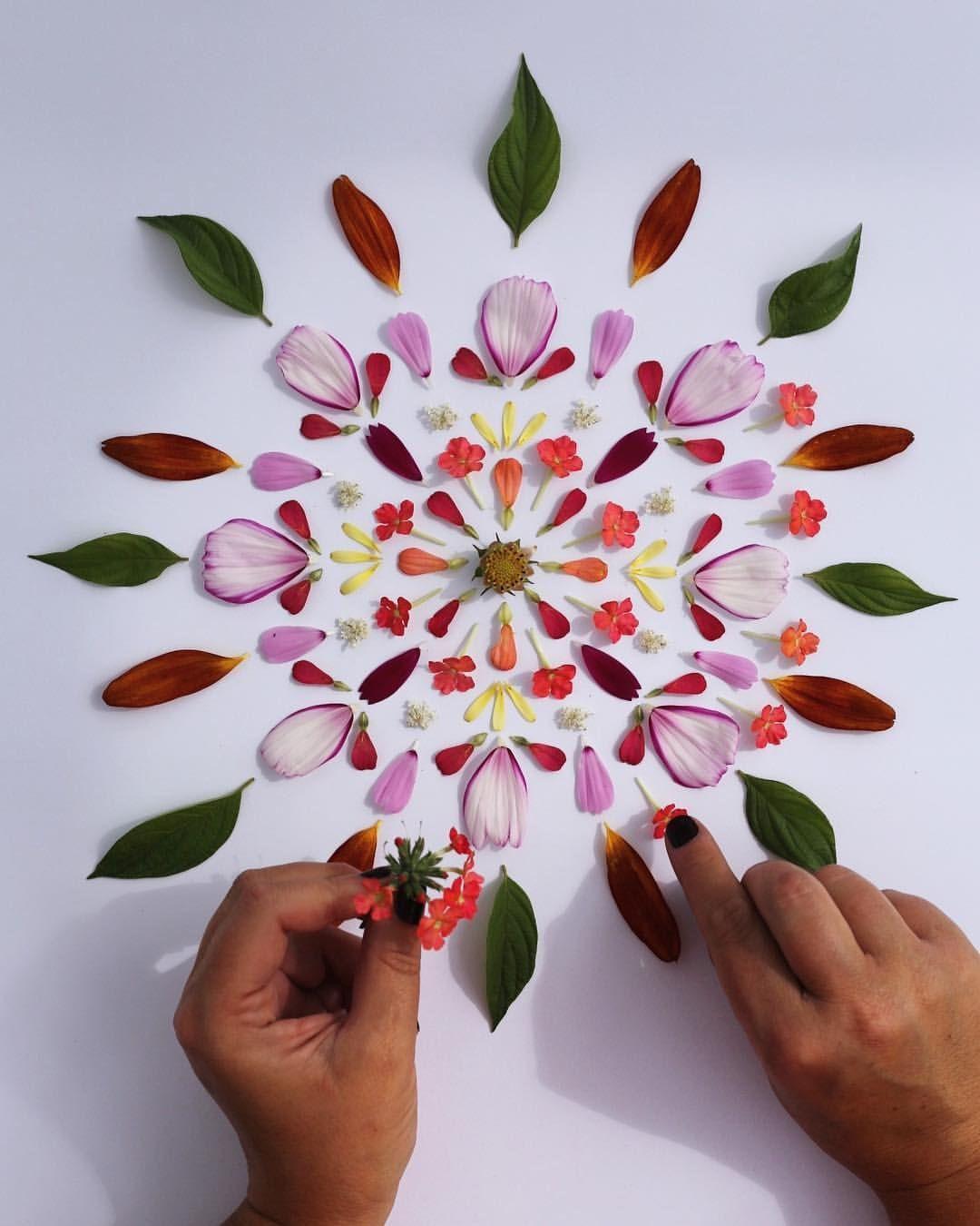 Kom och blomsterpilla med mig på Naturum i Kristianstad