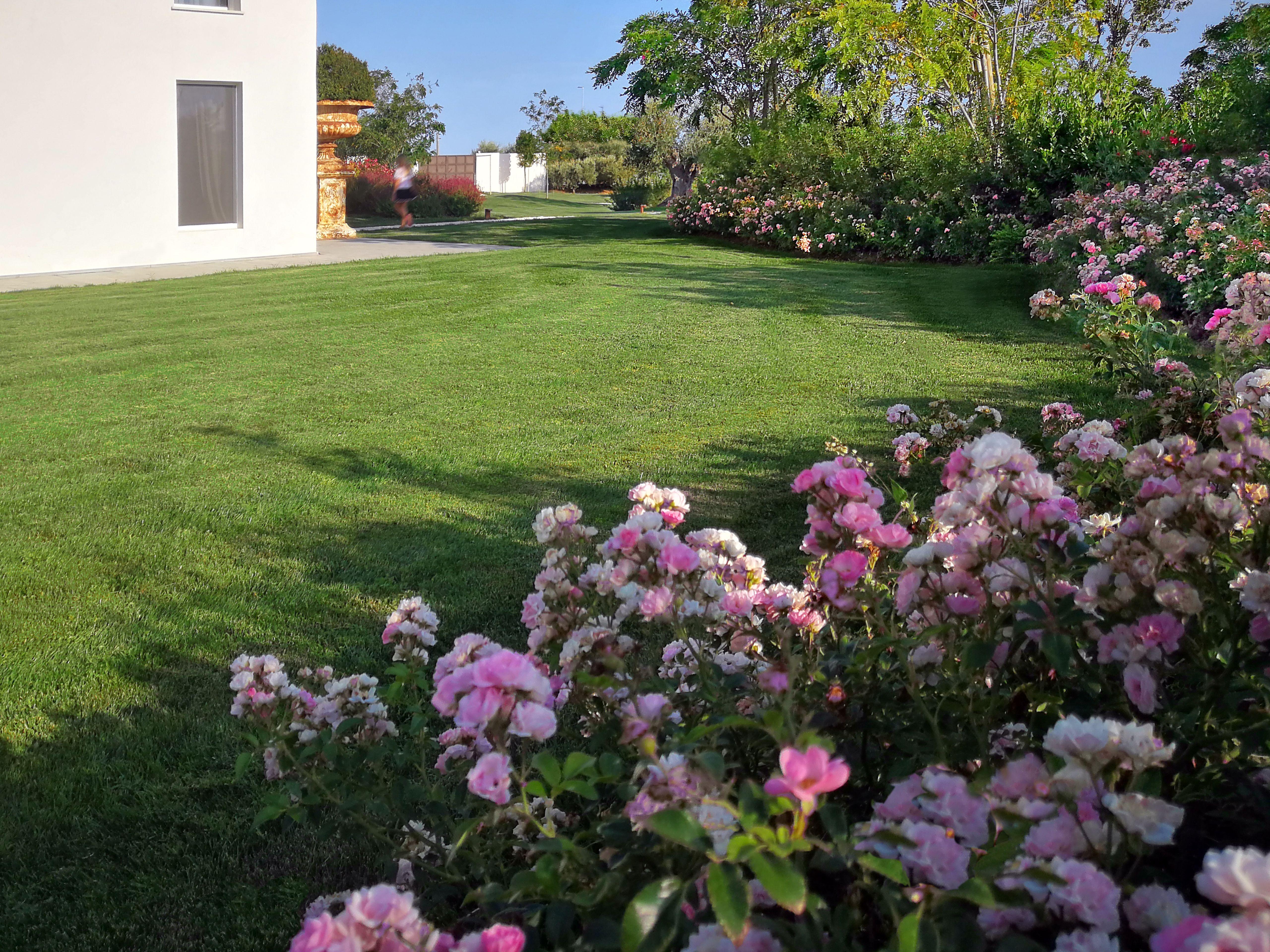 Giardino Di Una Casa villa e giardino ispirati al salento (con immagini
