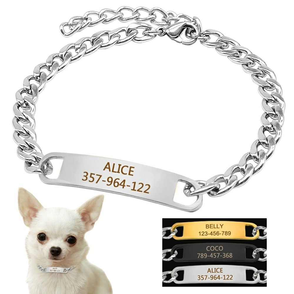 Small Dog Training Collar With Id Dog Tag Snake P Slip Chians