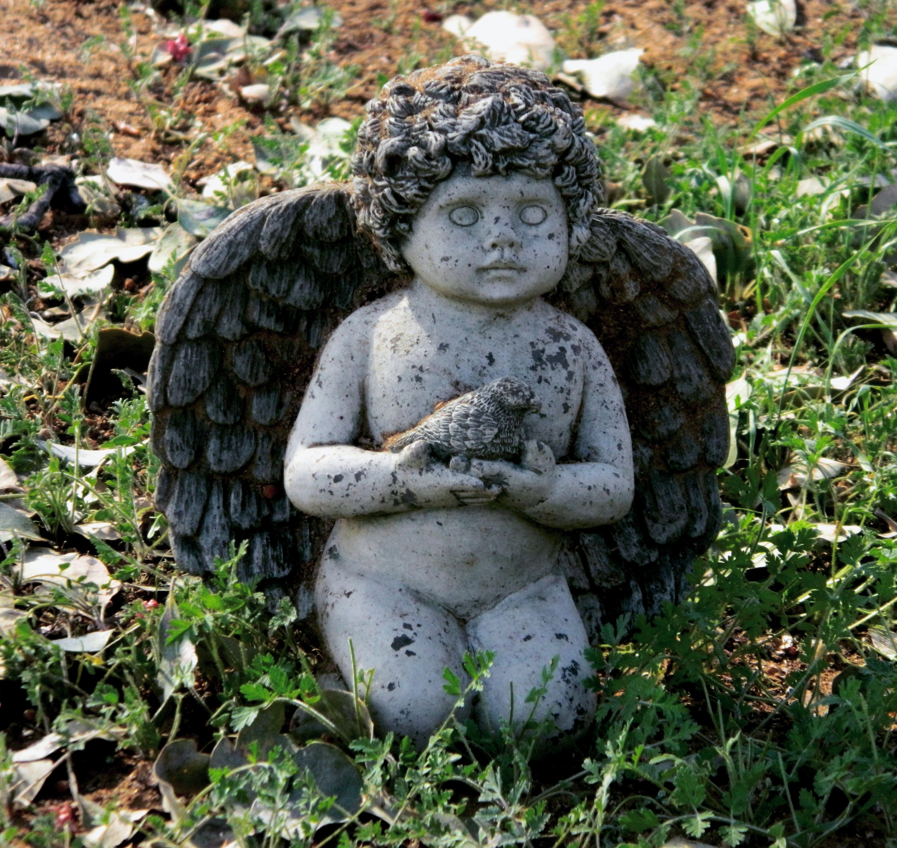 Small Angel Statues For Graves: A Small Statue Of A Cherub Found Sitting Next To A Child's