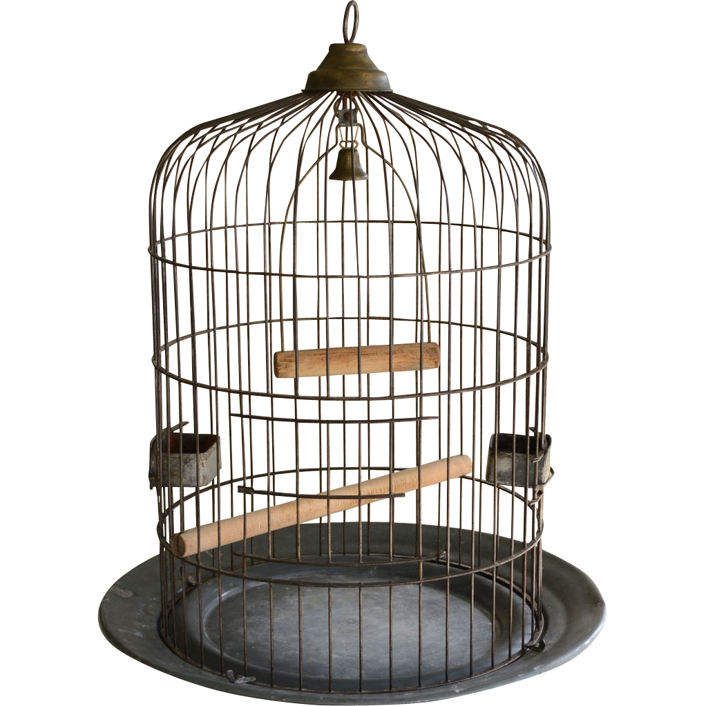 large antique birdcage o lindemann co a decorators dream from the old light warehouse on. Black Bedroom Furniture Sets. Home Design Ideas