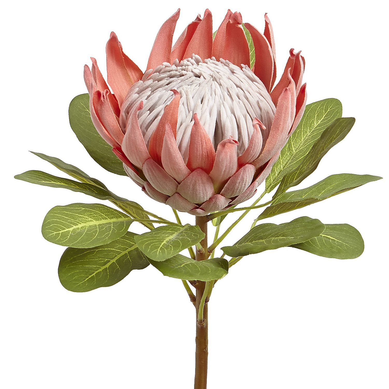 Oversized Faux Queen Protea Stem Pink Protea Art Flower Painting Flower Art