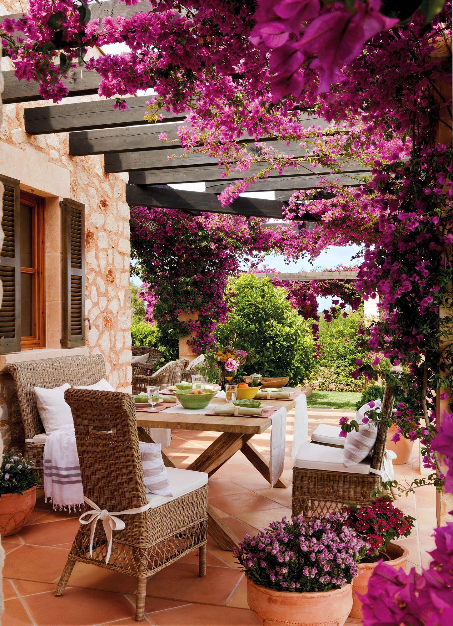 Comedor de exterior bajo pérgola cubierta de una buganvilla en flor_ ...