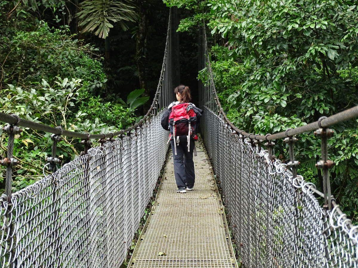 Nous avons visité un parc national dont l'attraction principale était la traversée de magnifiques ponts suspendus dont le plus haut mesure 95 mètres de hauteur... vertige assuré !!! Merveilleuse sensation au coeur de la canopée