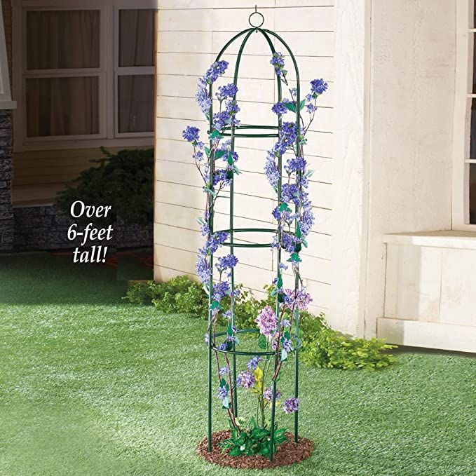 6ft Garden Plant Trellis Garden & Outdoor