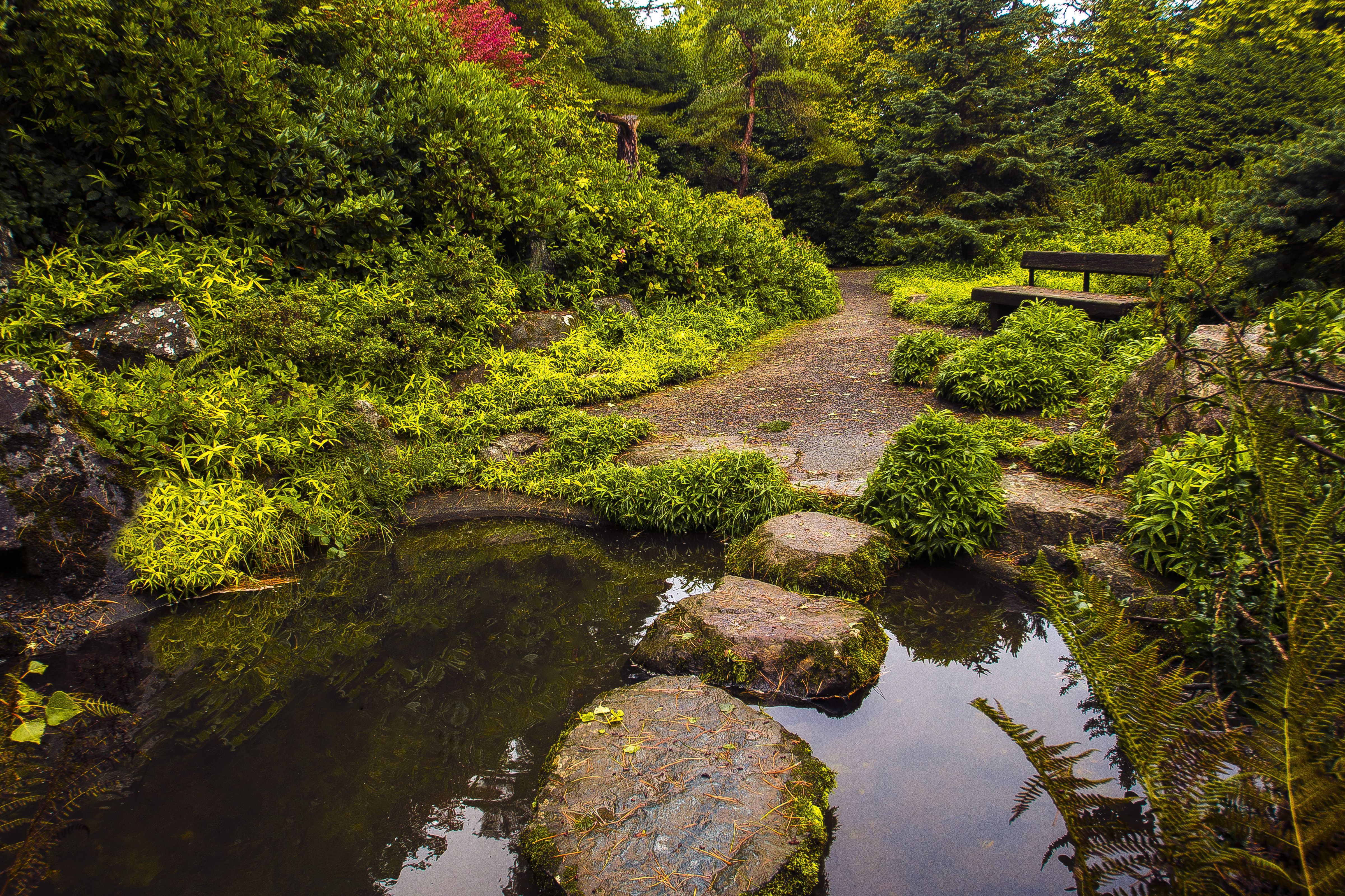 Hidden in South Seattle, Kubota Garden is a stunning 20 acre ...