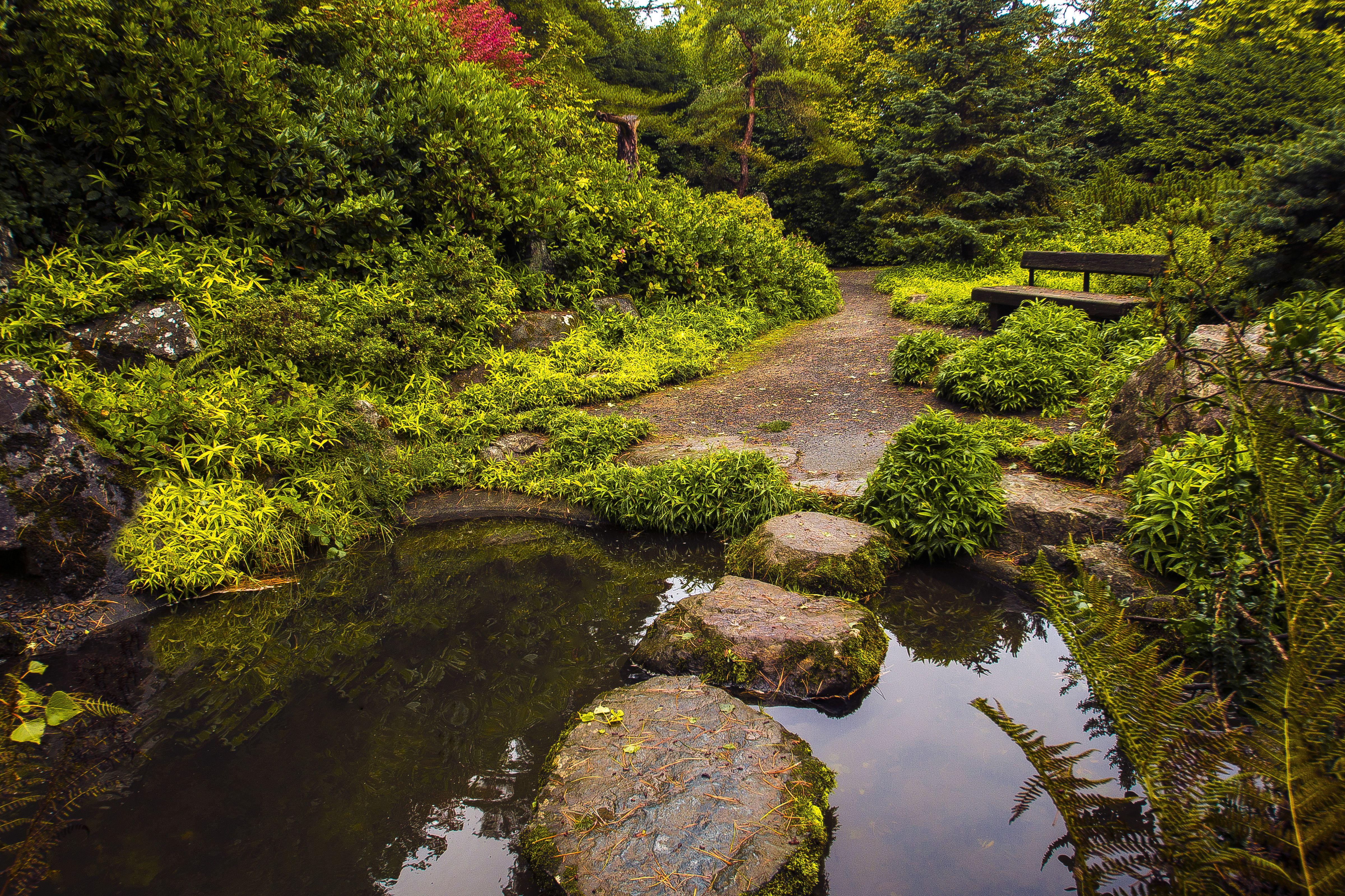 Hidden in South Seattle, Kubota Garden is a stunning 20