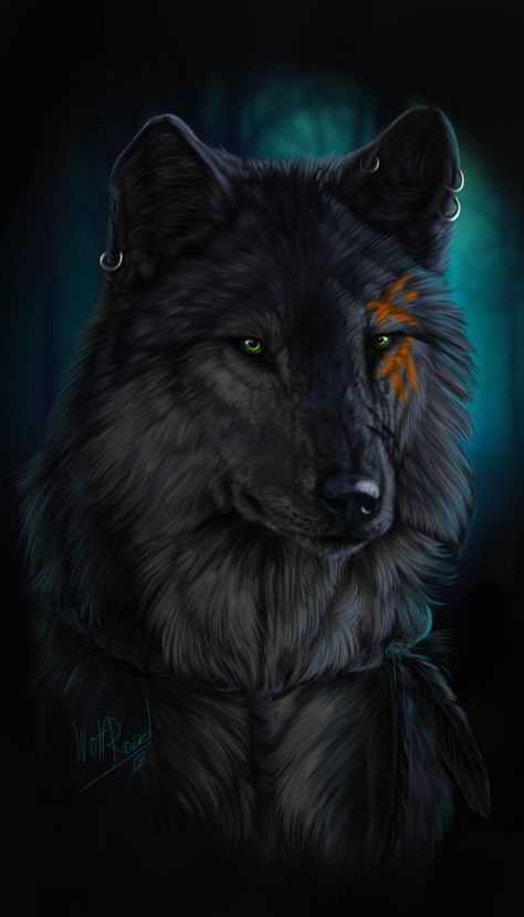 Photo of Old wolf by Atenebris on DeviantArt