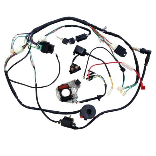 Pocket Bike Wiring Harness Get Free Image About Wiring Diagram