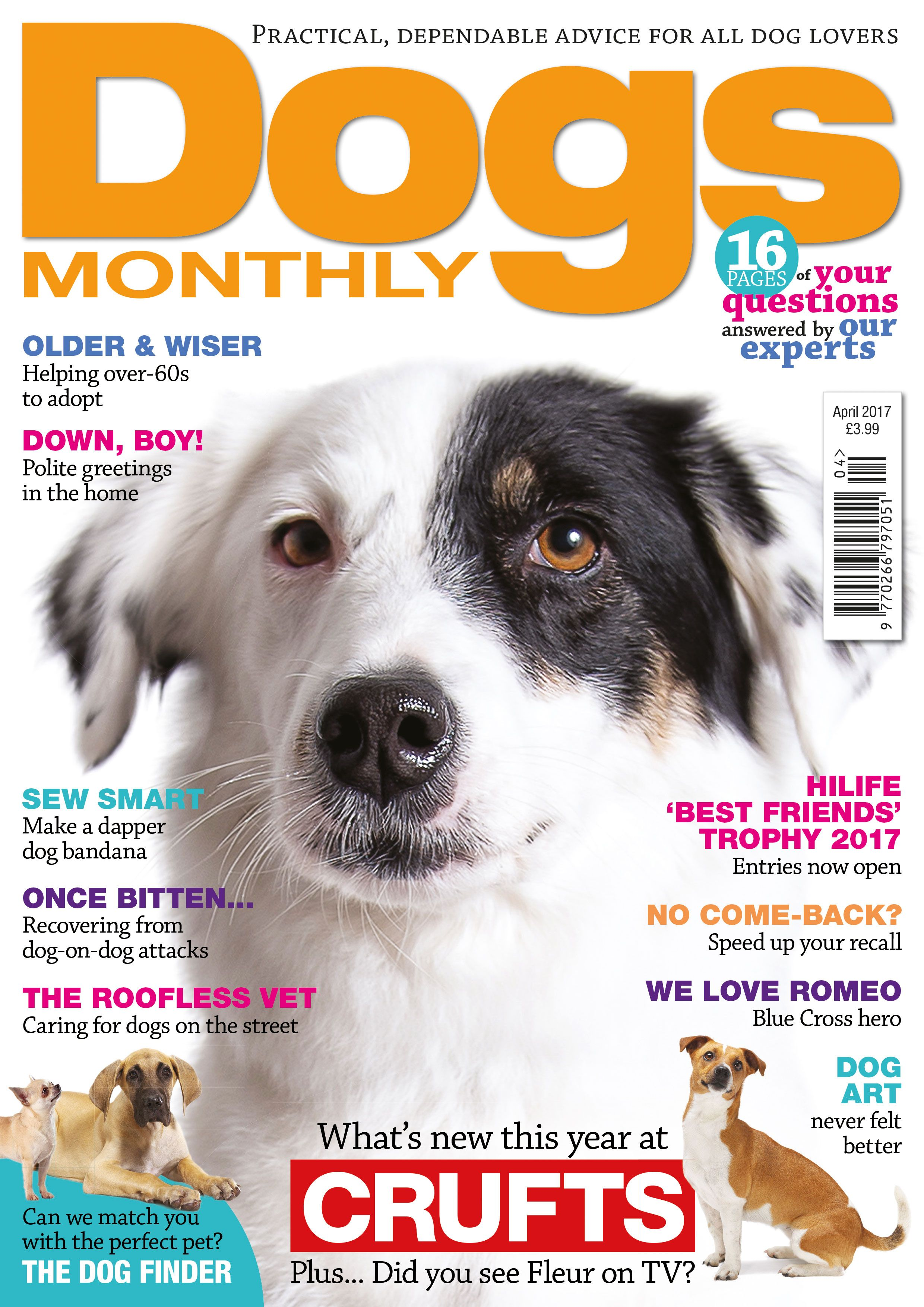 What S In Our April Issue Dogs Dog Lovers Dog Show
