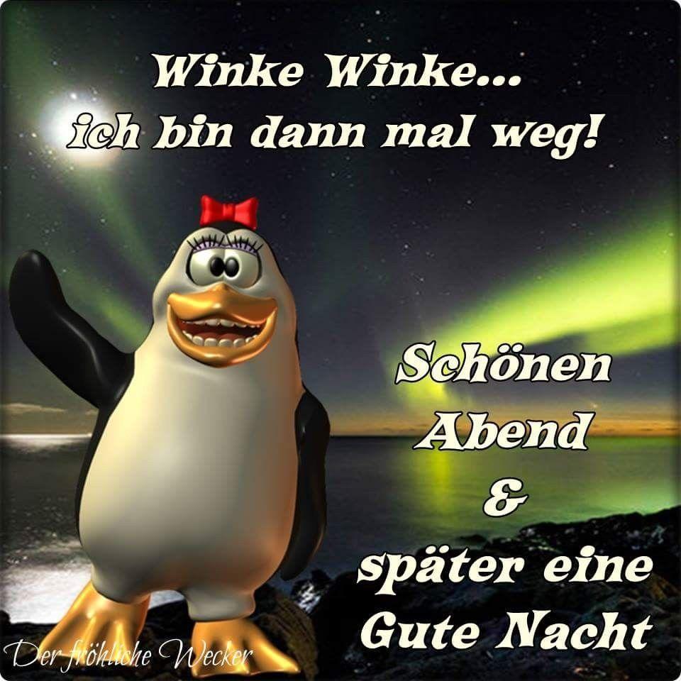 Witzige Gute Nacht Grusse Bilder Zum Posten Humor Good Night Verse