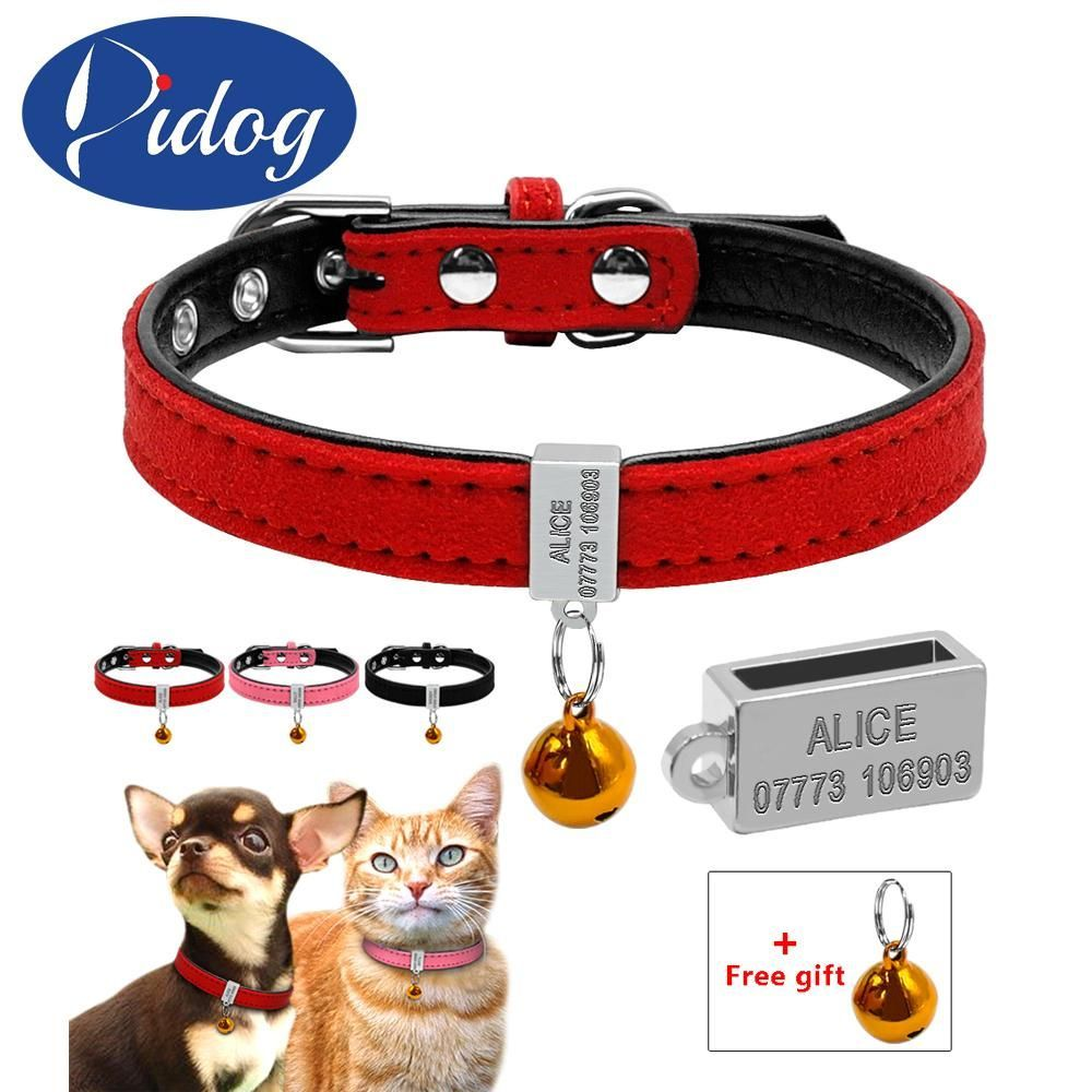 customized padded dog collar personalized cat dogs name id free