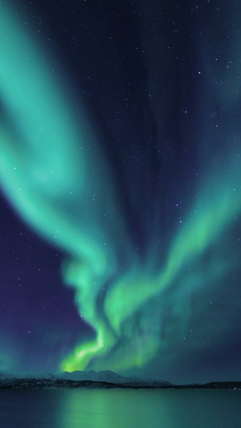Best 20 Northern Lights Pictures Download Free Images On Unsplash Northern Lights Wallpaper Northern Lights Photography Aurora Borealis Painting