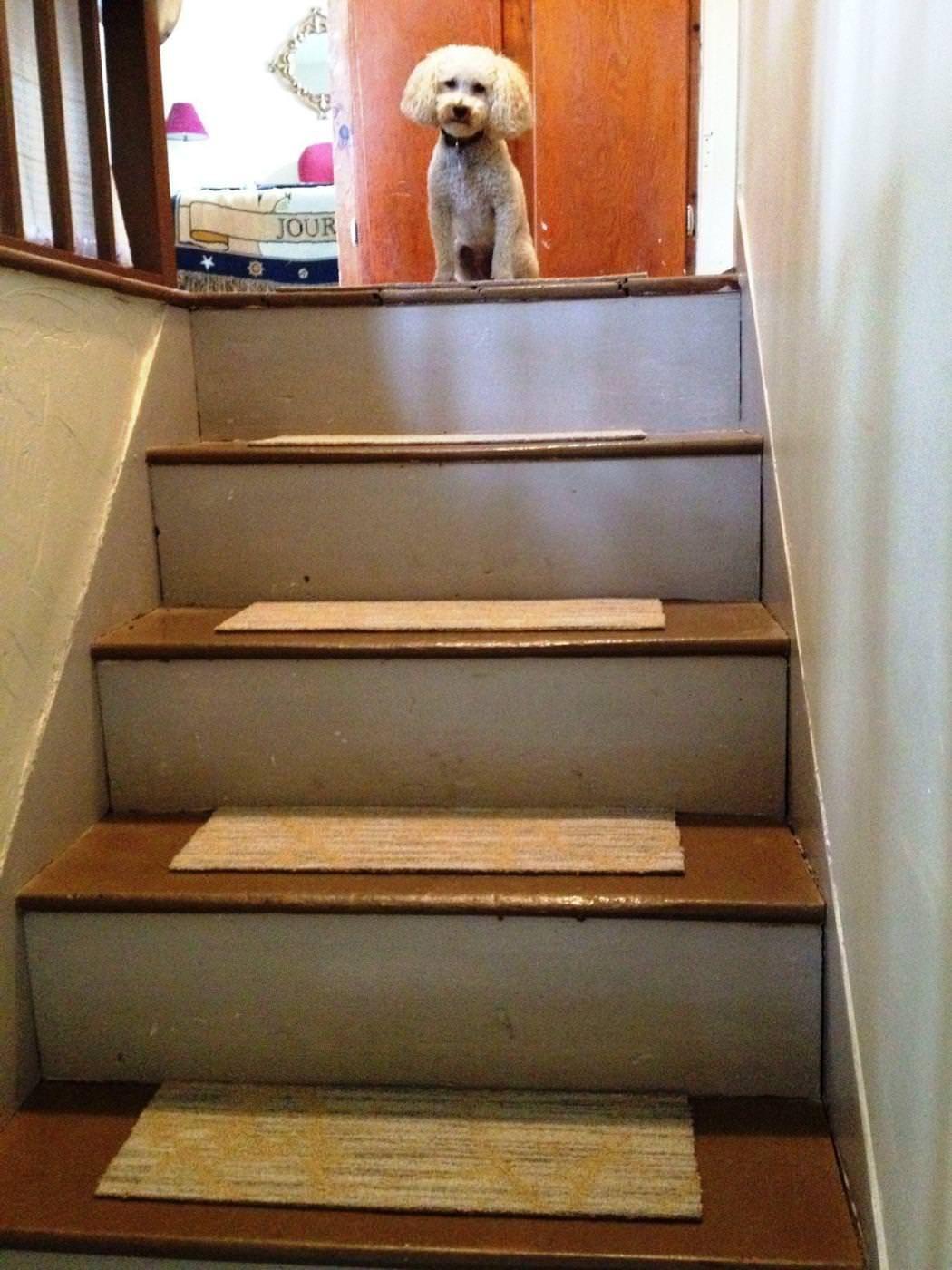 Peel And Stick Carpet Tiles For Stairs Tile Stairs Carpet Tiles   Stick On Carpet For Stairs   Rugs   Flooring   Carpet Tiles   Stair Runner   Anti Slip