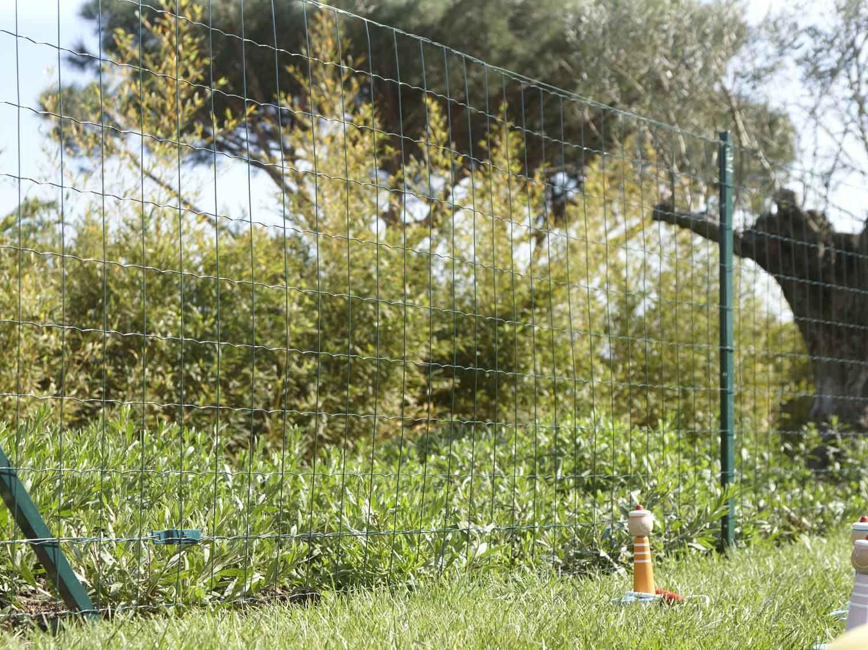 Gazon Artificiel Petit Garden 1x5m Au Rouleau 1 X 5 M Leroy Merlin Gazon Artificiel Gazon Synthetique Gazon