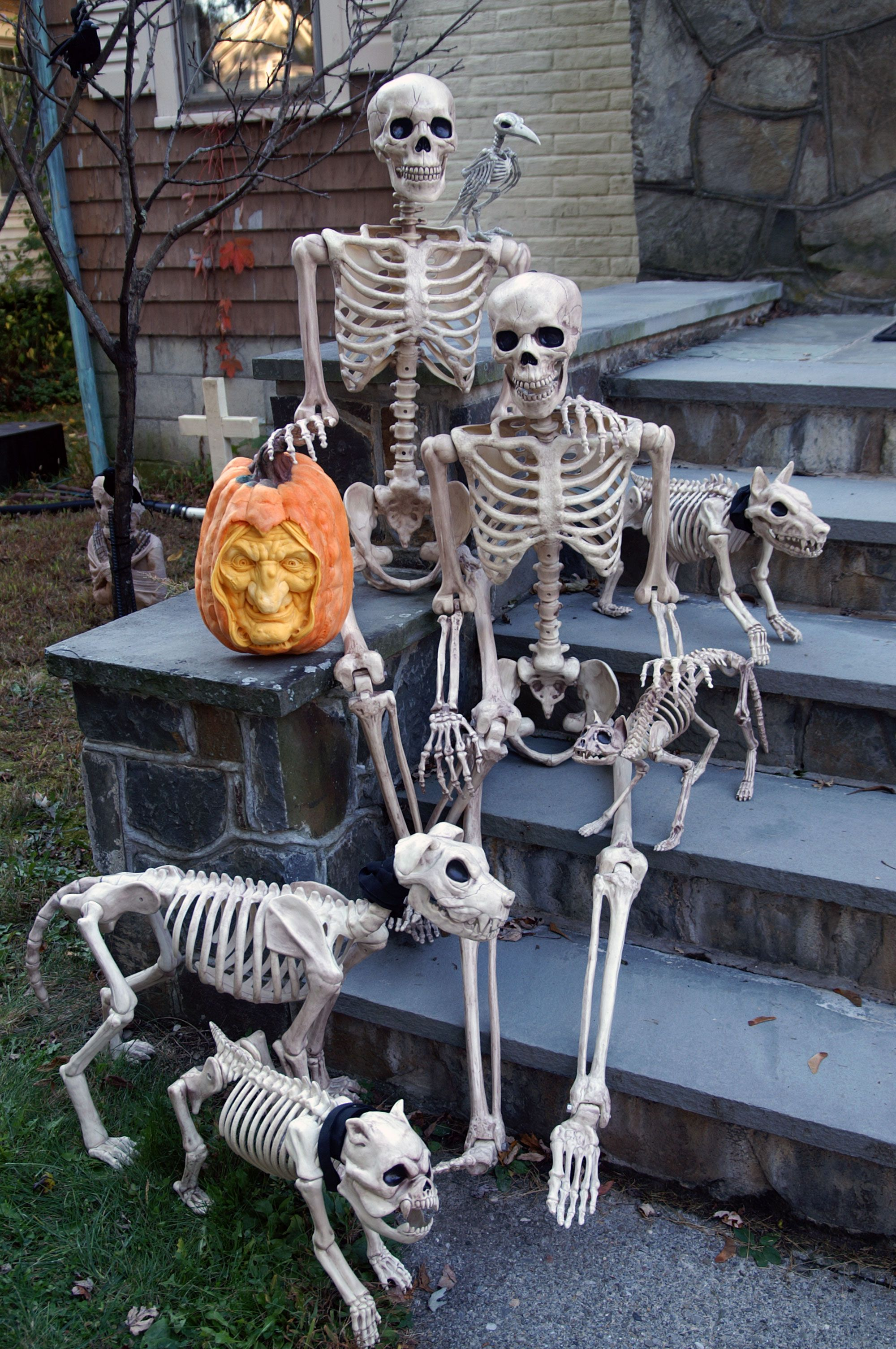 """The """"Bones"""" family poses for a family photo on our front"""