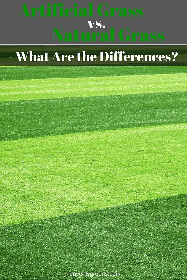 Artificial grass vs turf High Quality Artificial Grass Vs Natural Grass What Are The Differences Http Pinterest Artificial Grass Vs Natural Grass What Are The Differences