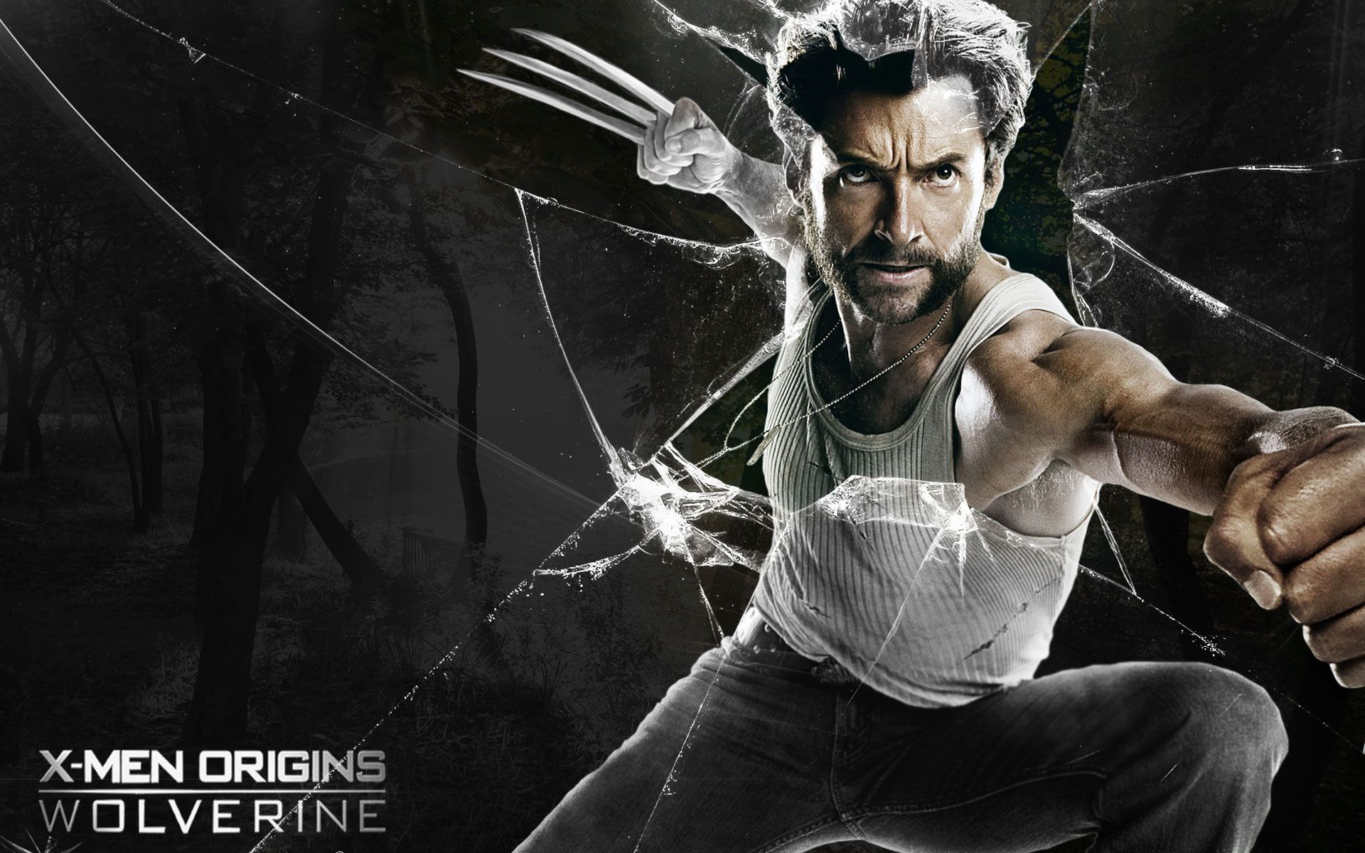 Wallpaper the wolverine picture wallpaper hd wallpapers wallpaper the wolverine picture wallpaper voltagebd Images