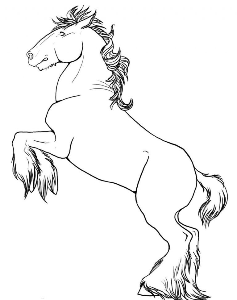 How To Draw A Horse Rearing Pictures Free Coloring Pages Horse