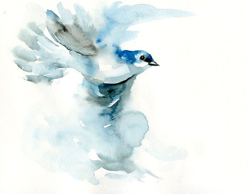Ethereal dove in blue watercolor with images bird art