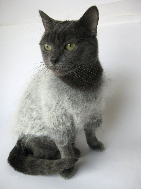 Hand knitted Mohair sweater, jumper for a cat, | Collars, Leashes ...