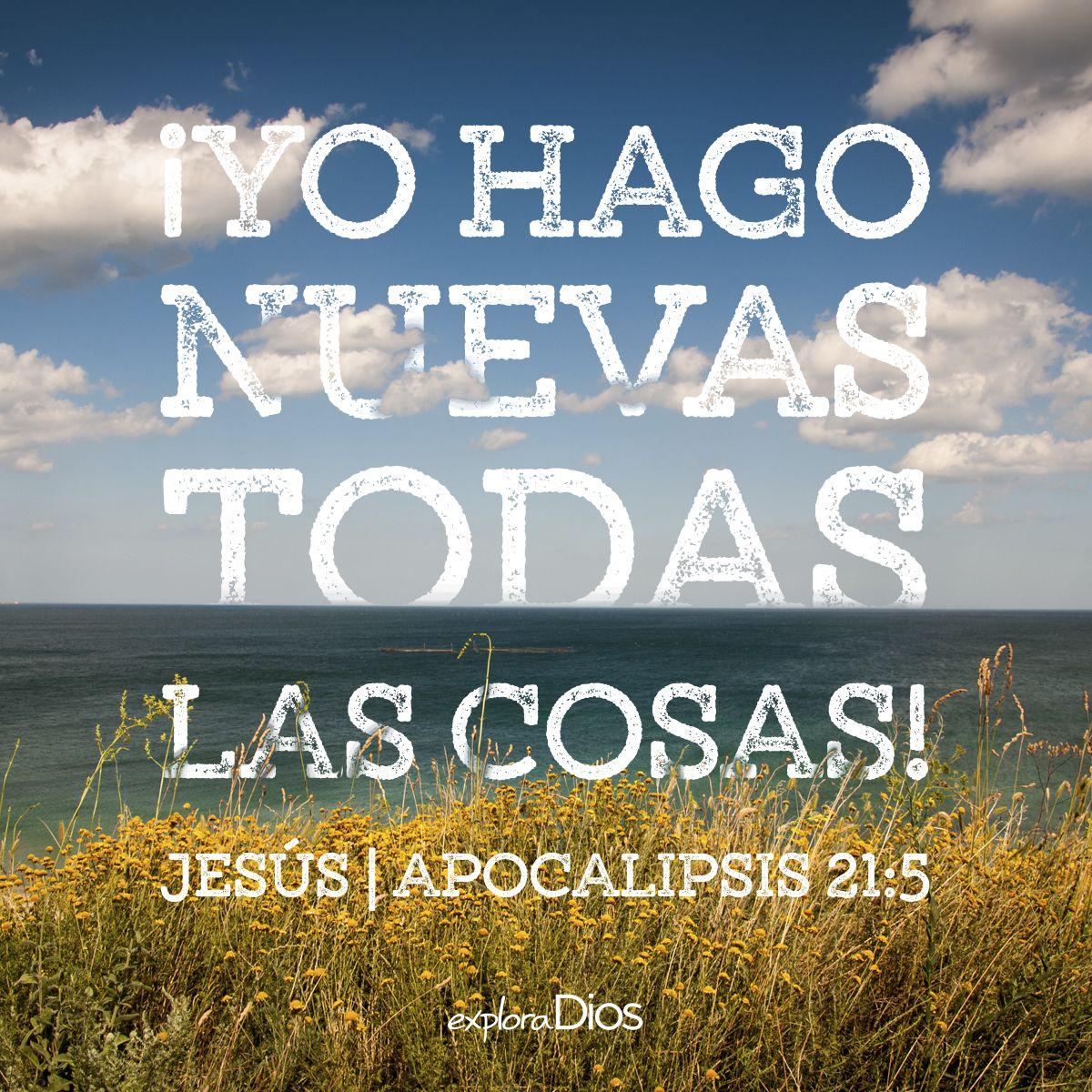 Explore God Palabras De Sabiduria Bendiciones De Dios Frases Bonitas De Motivacion