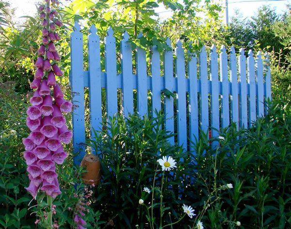 Stunning Barrire Jardin Noisetier Ideas - Matkin.info - matkin.info