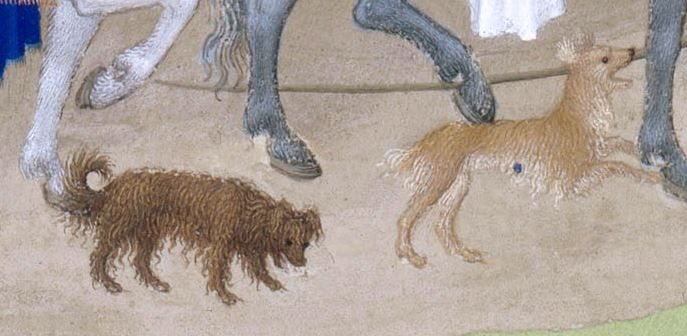 dogs from the tres Riches Heures of Jean Duc de Berry early 15thc