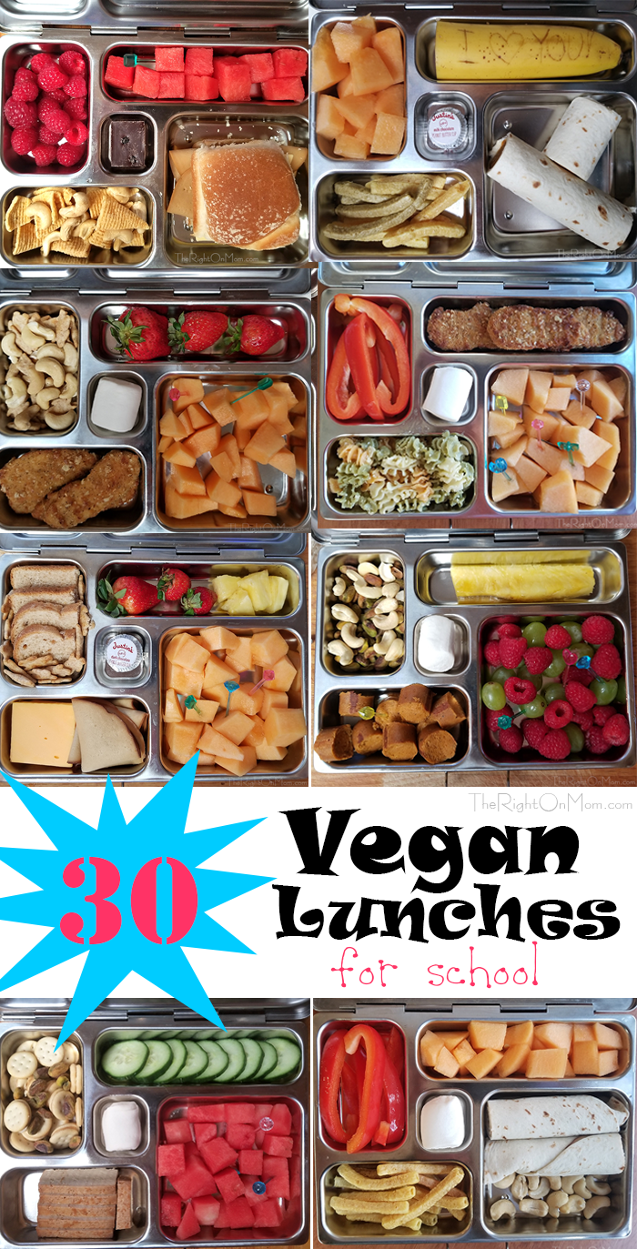 30 Vegan School Lunches #schoollunchideasforkids
