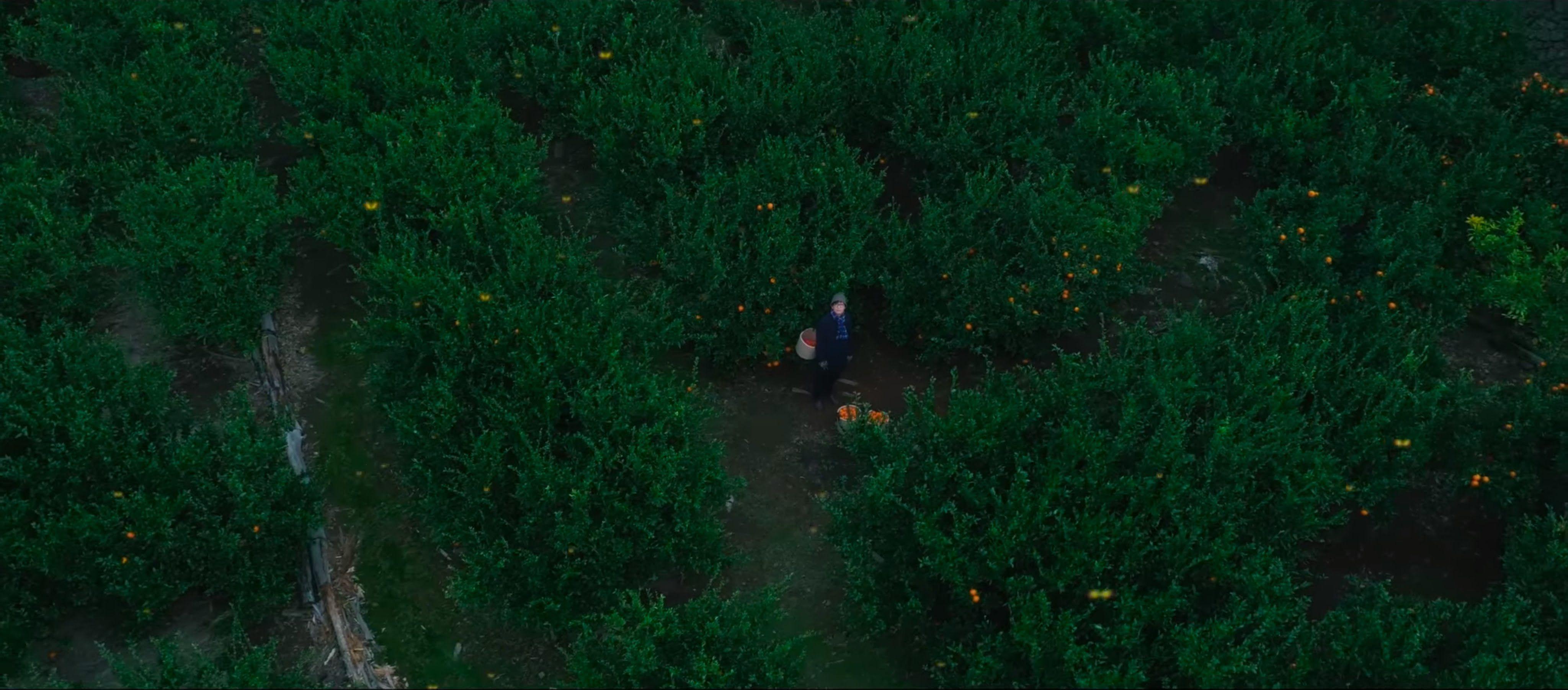 루시드폴(LUCID FALL) 정규 7집 타이틀곡 '아직, 있다.(Still There, Still Here)' OFFCIAL MV