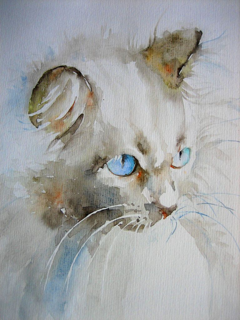 watercolor cat portrait | by anelest