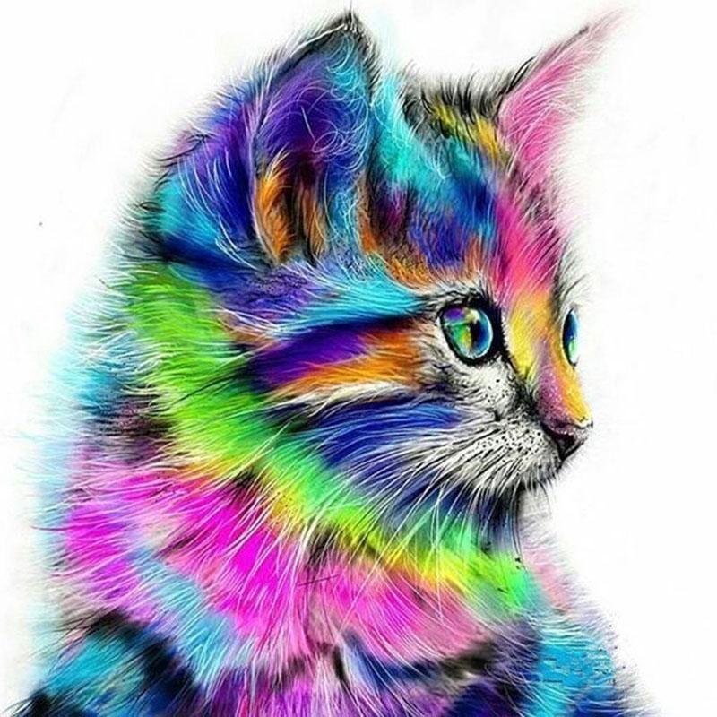 Rainbow Kitty Van Go Paint By Number Kit Cat Painting Animal Paintings Cat Art