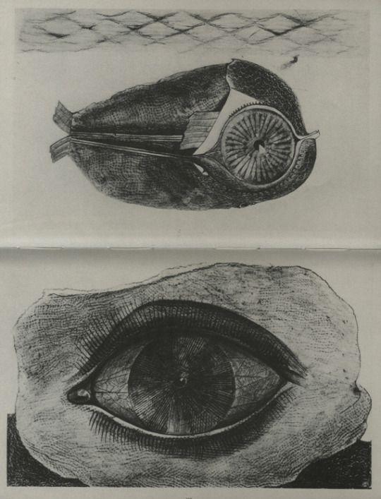 Max Ernst. Historie Naturelle. 1929.