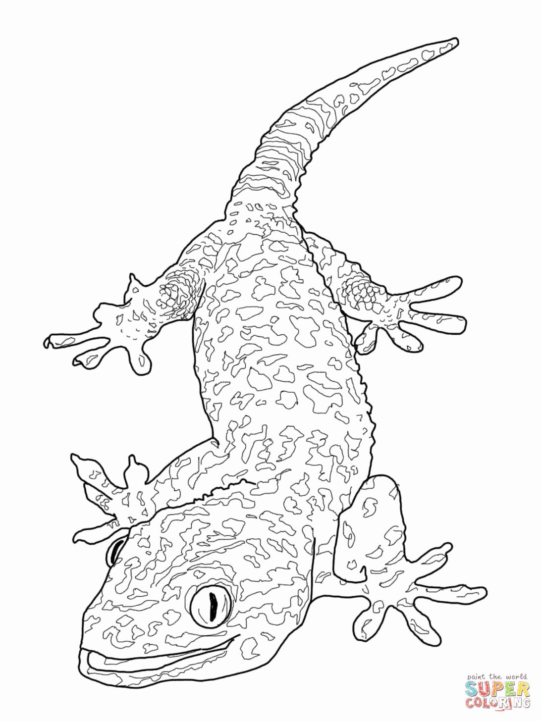 Bearded Dragon Coloring Pages For Kids Dragon Coloring Page Fish Coloring Page Cute Coloring Pages