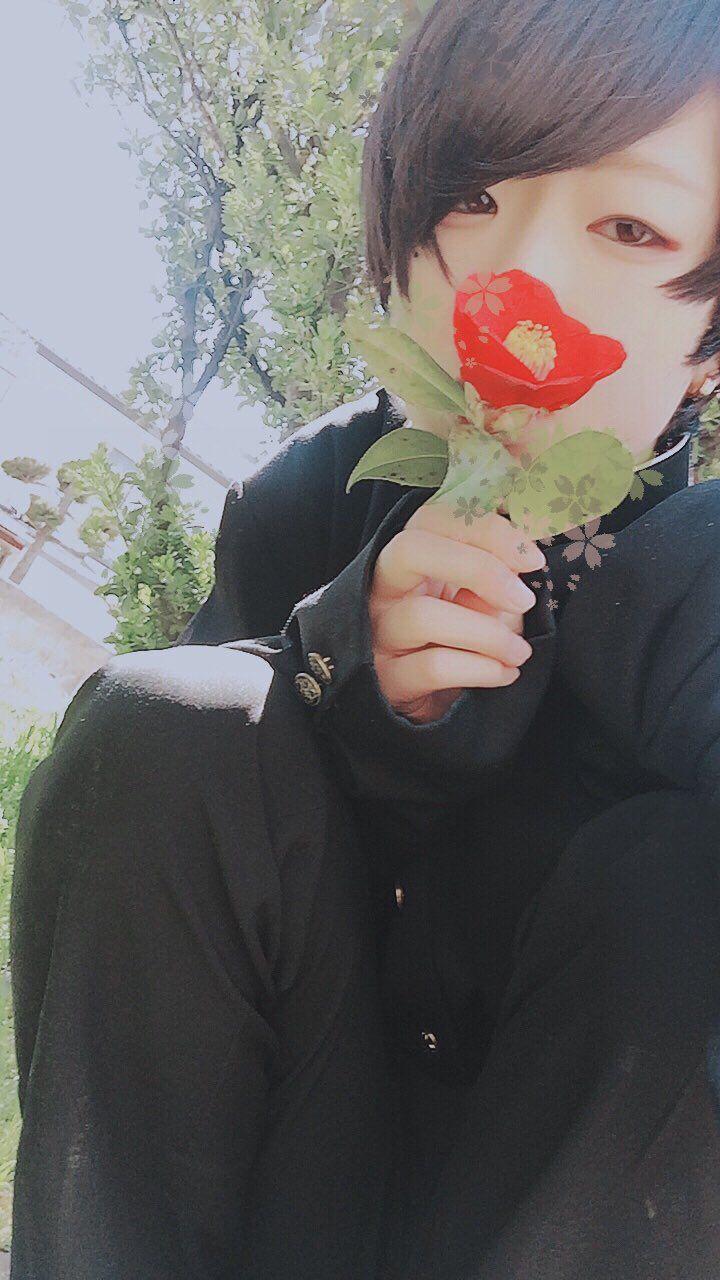 """紅花 on Twitter: """"実家から学ラン持ってくればよかった男装したい https://t.co/RtBvqZAcNT"""""""