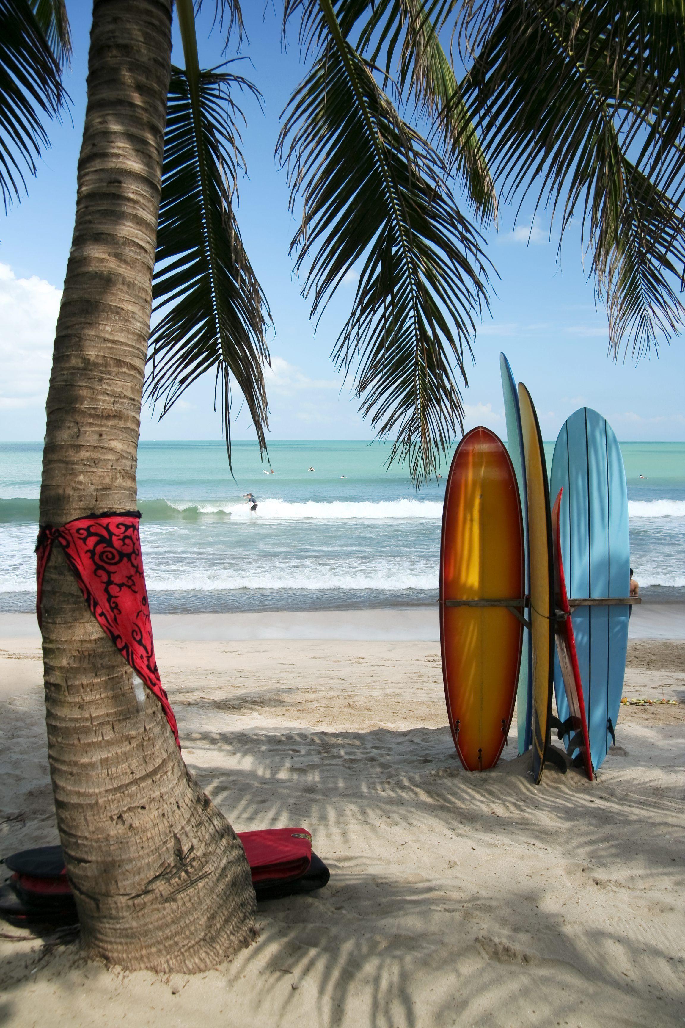 Pin van tuinederland op Indonesië Indonesië, Surfborden