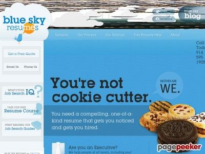 nice The Blue Sky Guide To Resume Writing Cooking Pinterest - blue sky resumes