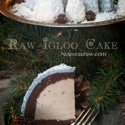 Igloo Cake – Peanut Butter Banana Ice Cream Center (raw, vegan, gluten-free)